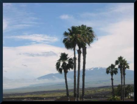 Beautiful Hawai'ian Landscape, snow-capped Mauna Kea in distance  (c) 2004 DCoyote