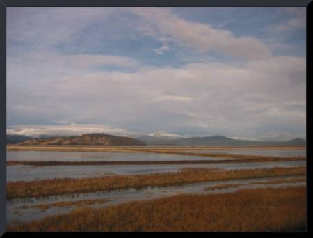 Klamath Lake, Oregon (c) 2003 DCoyote