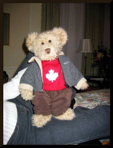 Teddy in Canadian threads (c) 2003 DCoyote