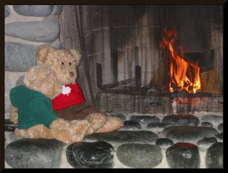 Teddy and Tinker enjoy a cozy fire (c) 2003 DCoyote