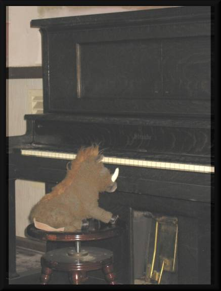 Warty playing piano and singing. ' Hey, where's everyone going?' (c) 2005 David Coyote